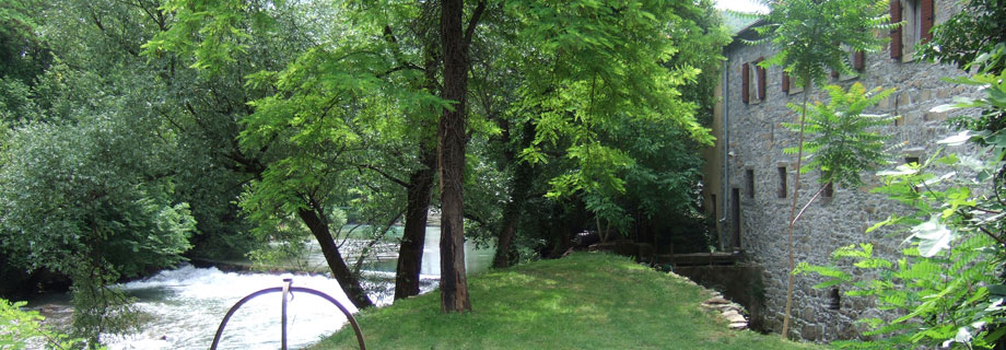header-apartment-bordon-koper-river-rizana-slovenia