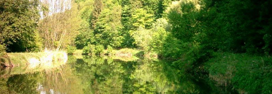Kanal v Ceršaku