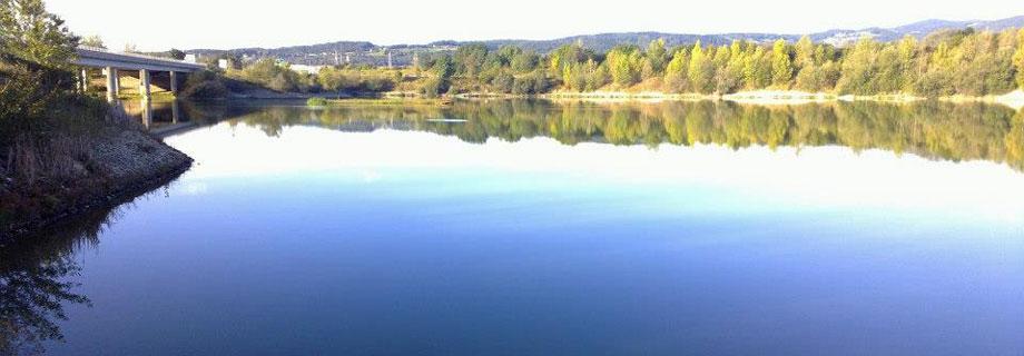 maribor-gramoznica-hoce-krapolov-stajerska-slovenia-fishing-carp-fishing.jpg