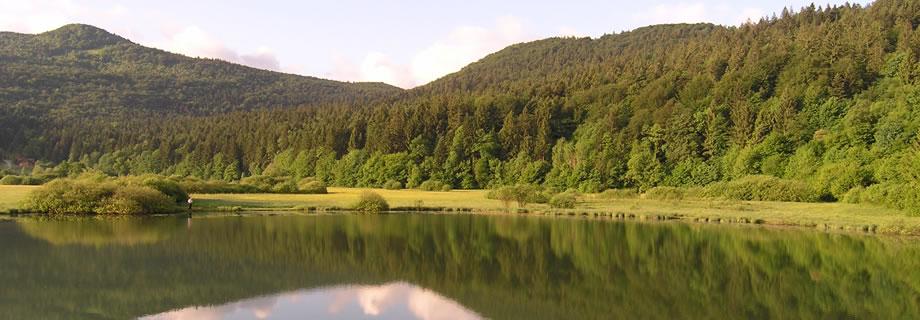 Krimsko(Podpeško) lake