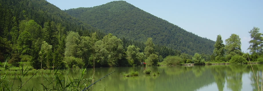 pond Strahomer