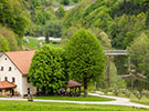 Zelinc tourist farm Slovenia Idria fly fishing