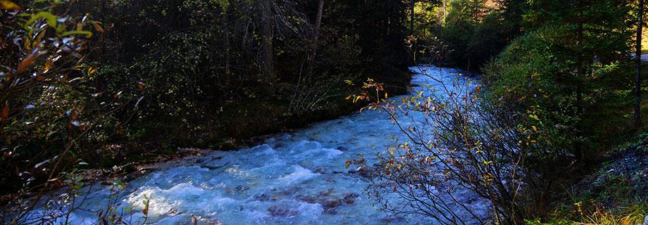 Potok Bistrica (10)