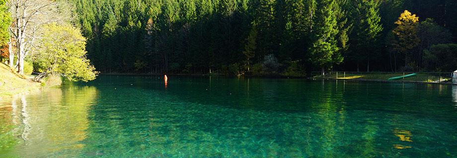 Akumulacijsko jezero v Javorniškem rovtu (58)