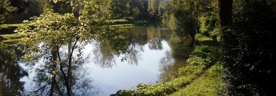 Gameljščica-ribniki