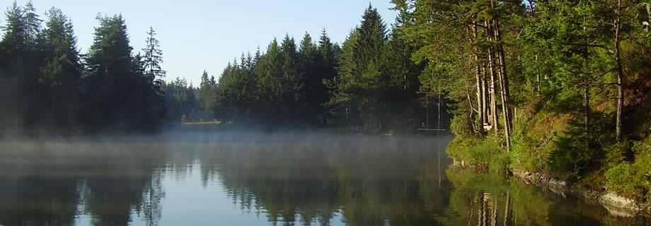 ribnik Rakitna