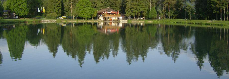 ribnik Gaj