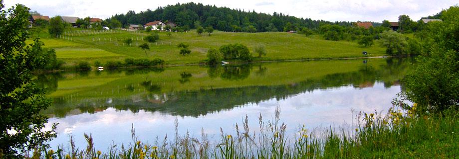 smartinsko-jezero-krapolov-celje-nakup-karte.jpg