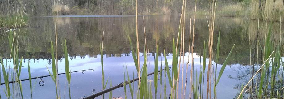 Stražiški ribnik