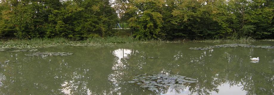 ribnik Tivoli